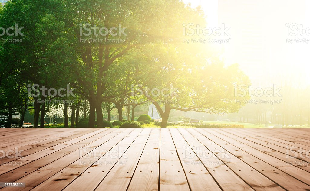 Wooden board with tree stock photo