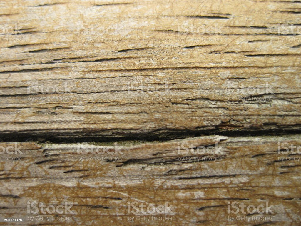 Wooden boards. stock photo