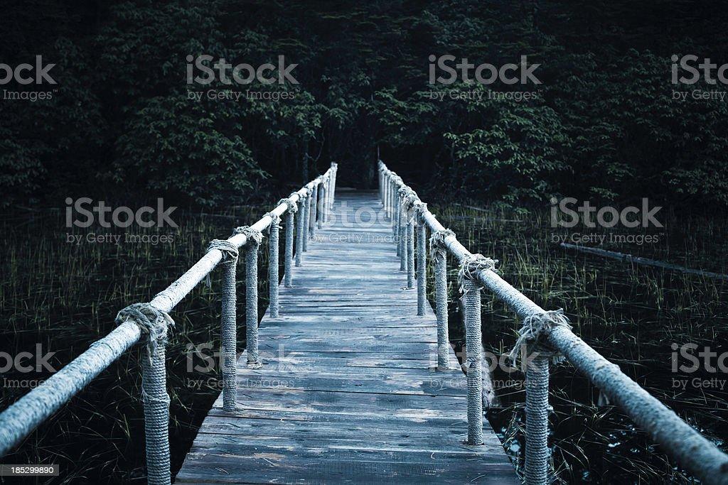 wooden boardwalk in dark forest stock photo