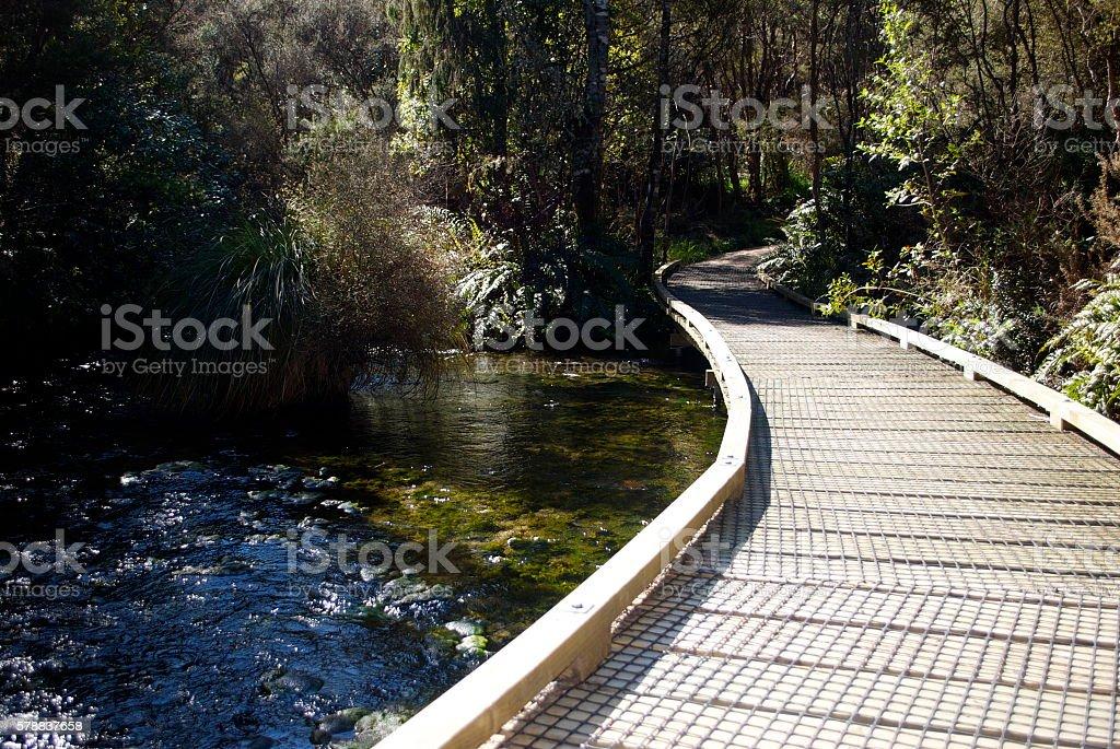 Wooden Boardwalk, New Zealand stock photo
