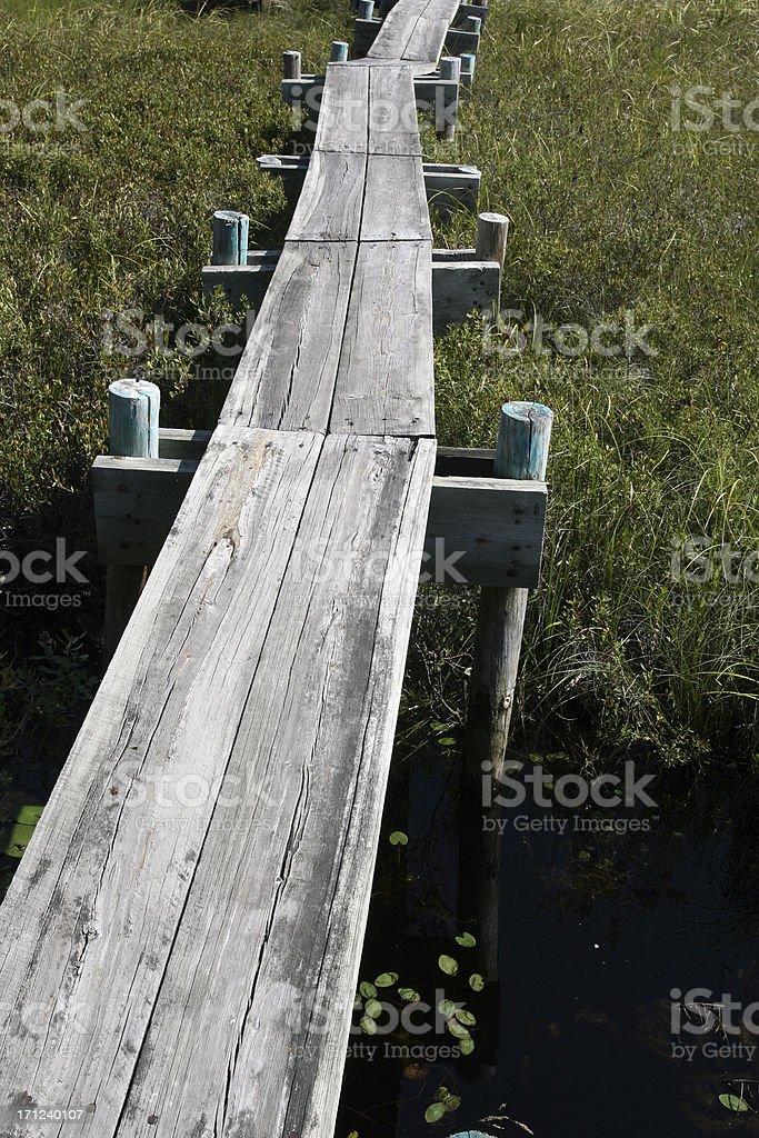 Wooden Boardwalk royalty-free stock photo
