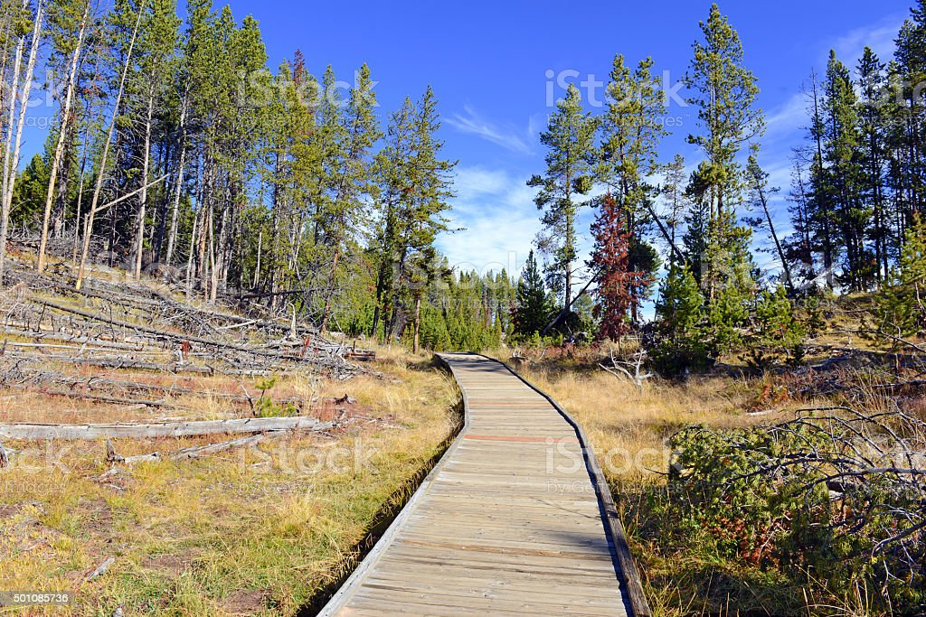 Wooden Boardwalks on the geothermal areas of Yellowstone National Park stock photo
