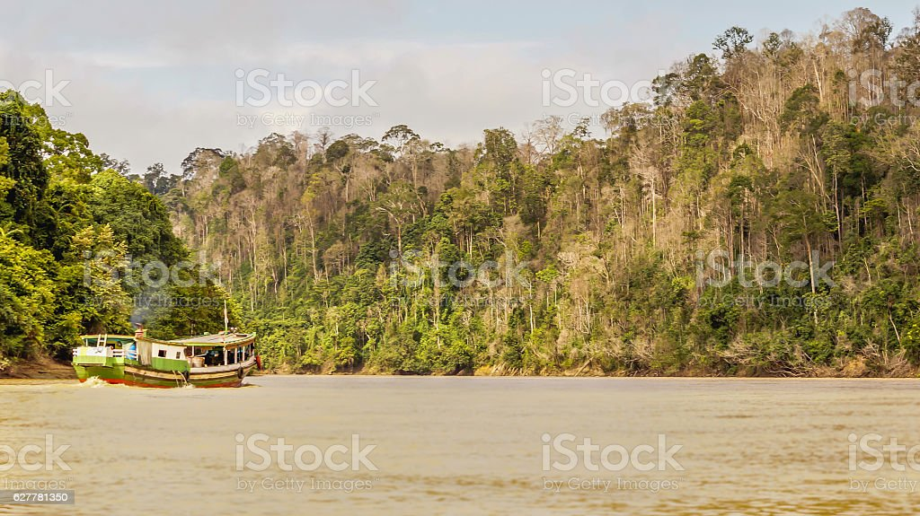 wooden boat cruising deep into the jungle stock photo