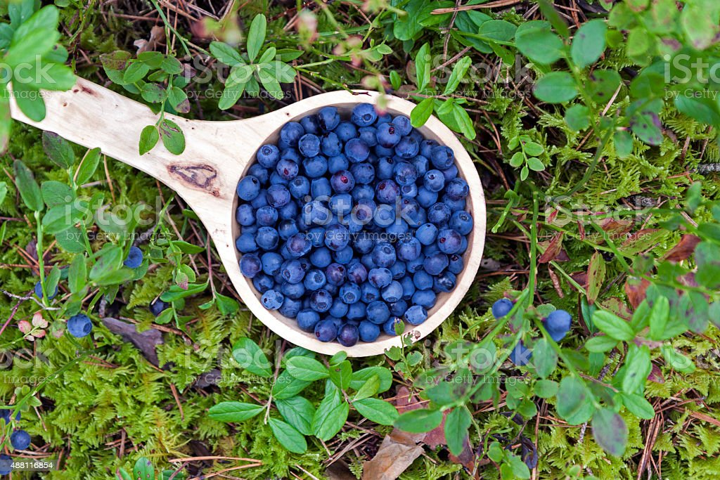 Wooden bowl of blueberries stock photo