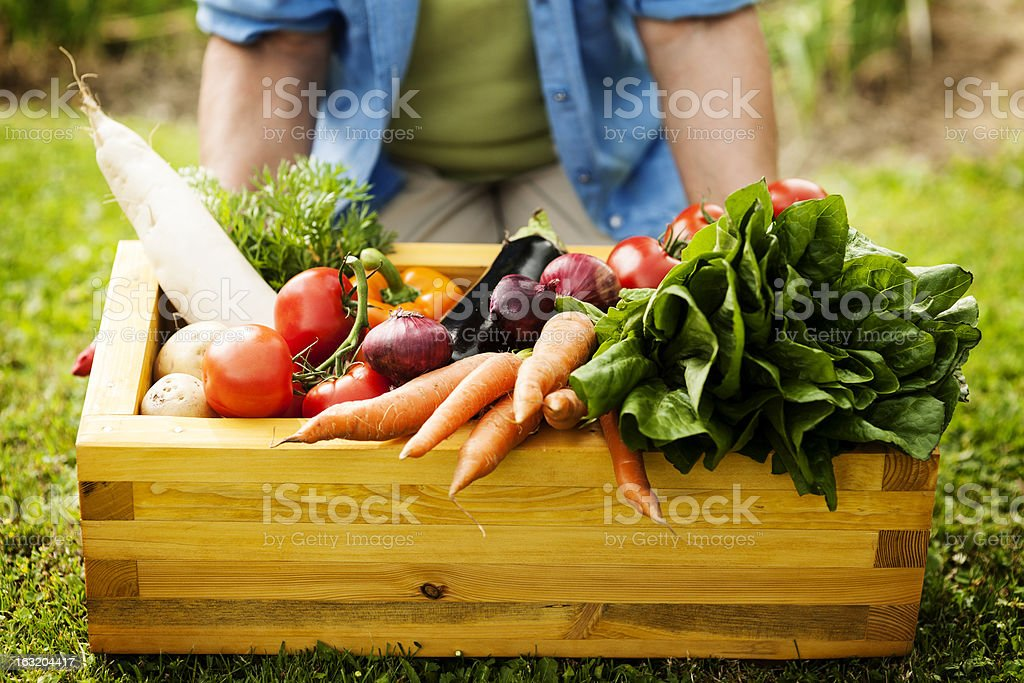 Wooden box filled fresh vegetables stock photo