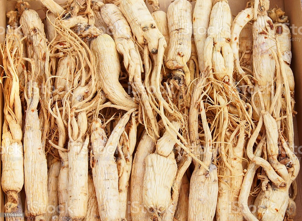 Wooden box full of lined-up ginseng stock photo