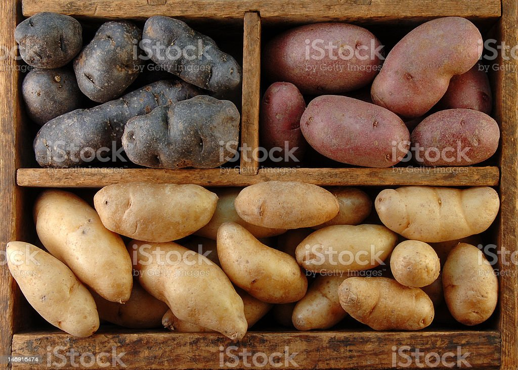 Wooden Box of Potatoes royalty-free stock photo