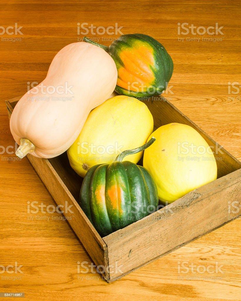 Wooden box of winter squash stock photo