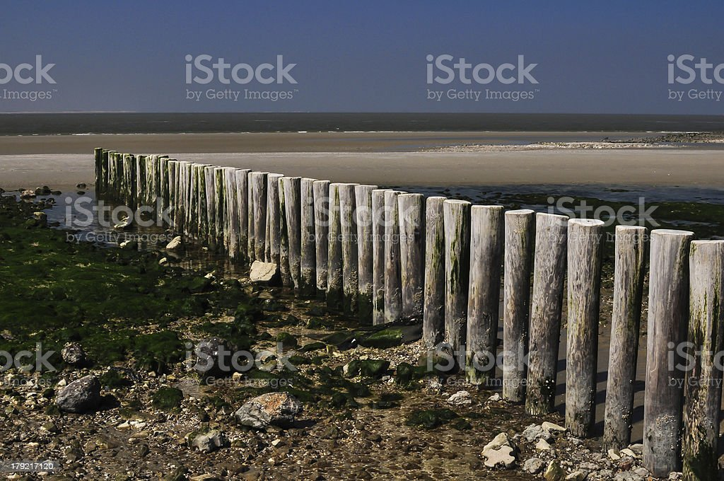 wooden breakers on island of Ameland the Netherlands royalty-free stock photo
