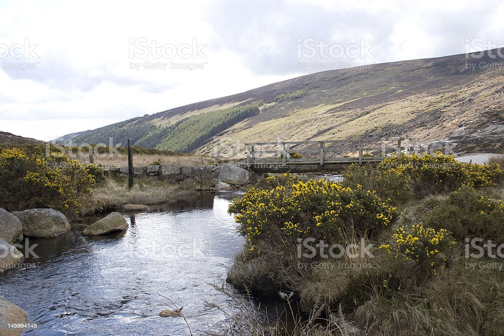 Wooden Bridge and stream at St Kevin's Way Glendalough Wicklow stock photo