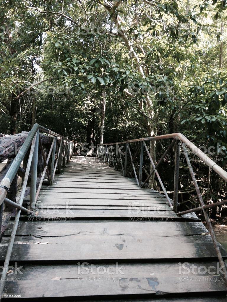Wooden bridge at erawan waterfall stock photo