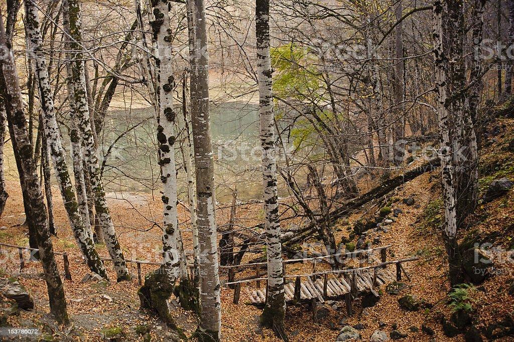 wooden bridge by the lake royalty-free stock photo