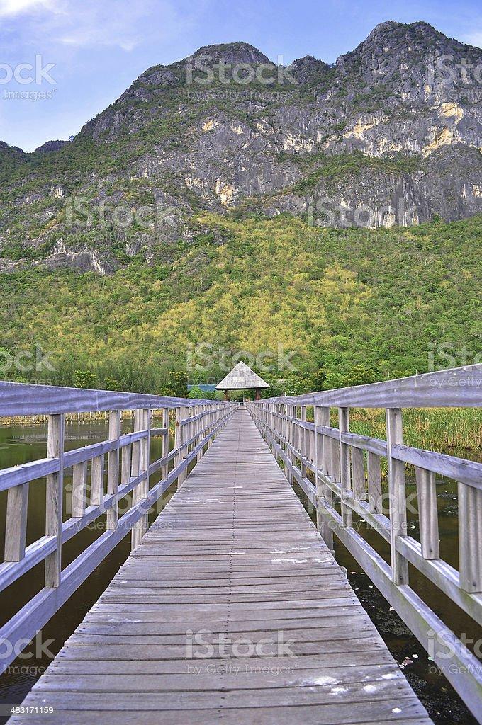 Wooden bridge heading to the mountains stock photo