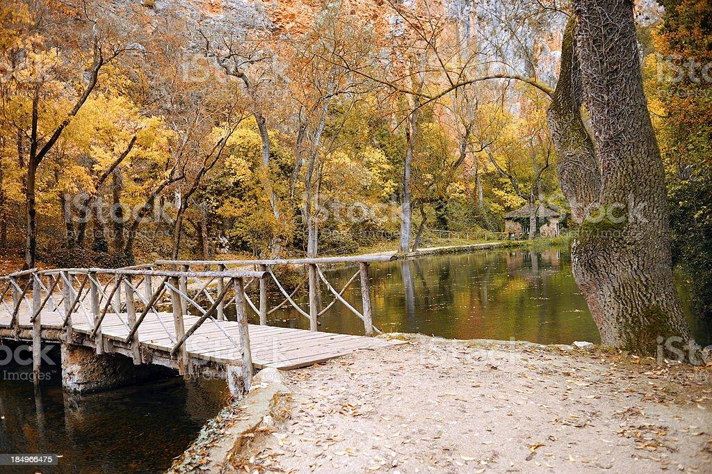 Wooden bridge in a beautiful autumn park stock photo