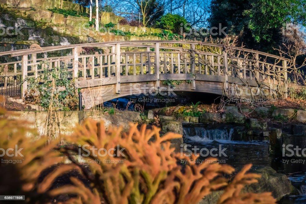 Wooden bridge in Regents Park stock photo