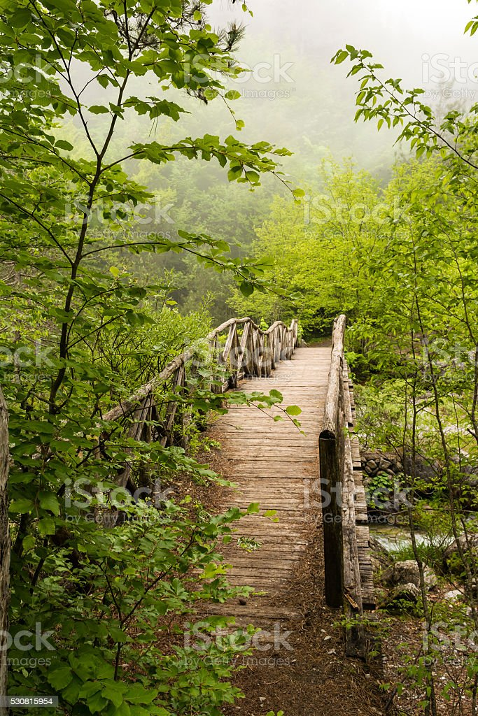 Wooden bridge in the mountains of Olympus, Greece stock photo