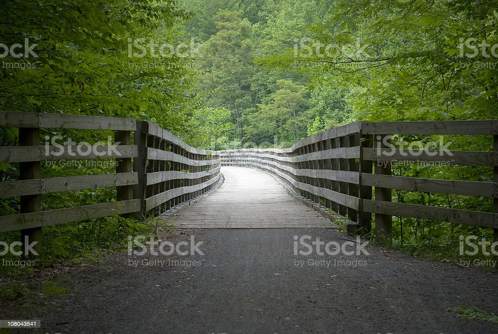 Bridge in Green Forest on the Virginia Creeper Trail royalty-free stock photo
