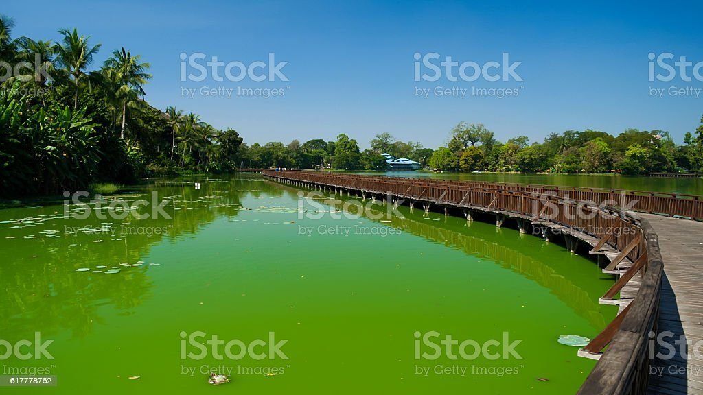 Wooden bridge over Kandawgyi lake in Yangon Myanmar stock photo