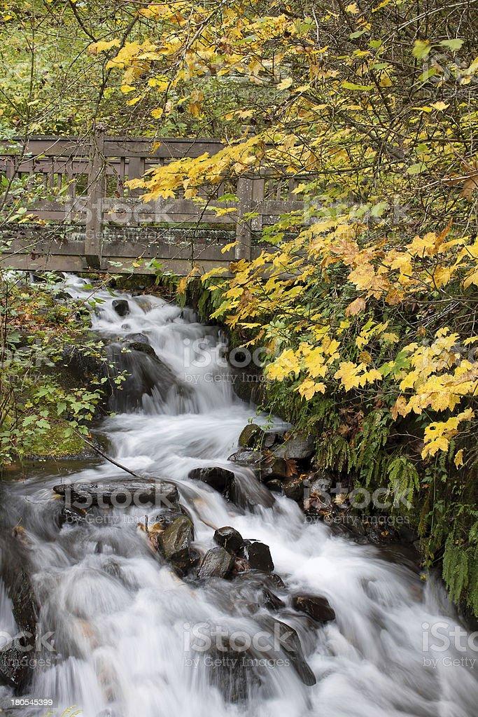 Wooden Bridge over Wahkeena Creek Falls royalty-free stock photo