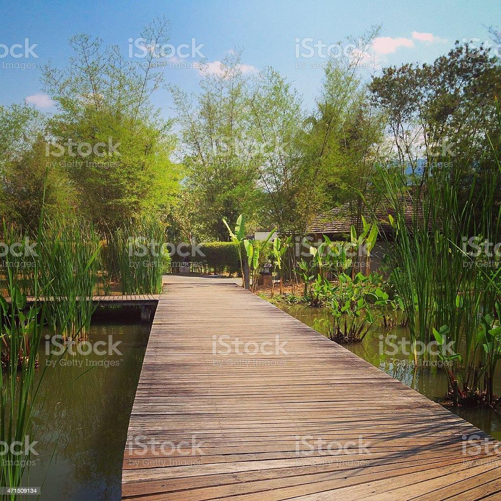 Деревянный Мост путь в парке Стоковые фото Стоковая фотография