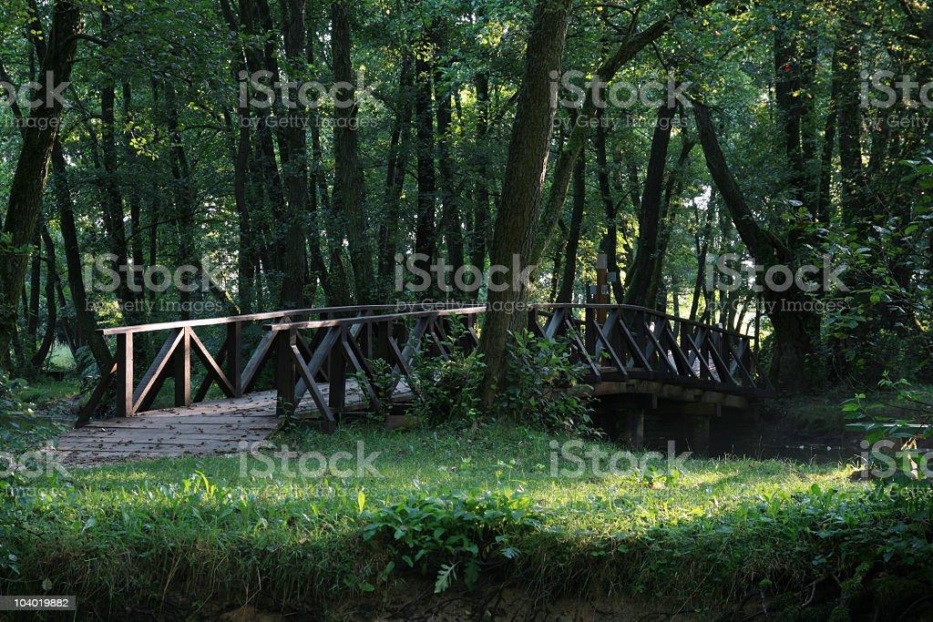 Wooden Bridge royalty-free stock photo