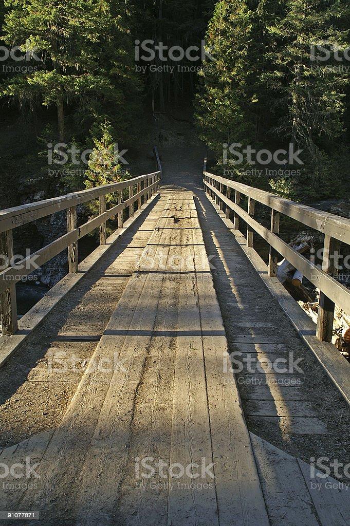 Wooden Bridge to woods royalty-free stock photo