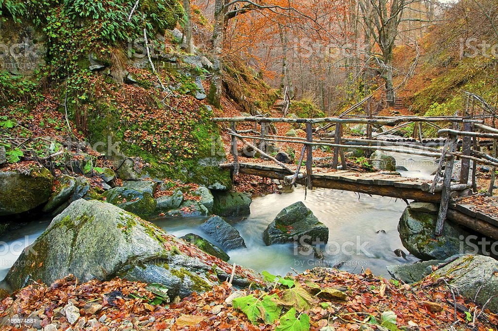 Wooden Bridges Over Smooth River royalty-free stock photo
