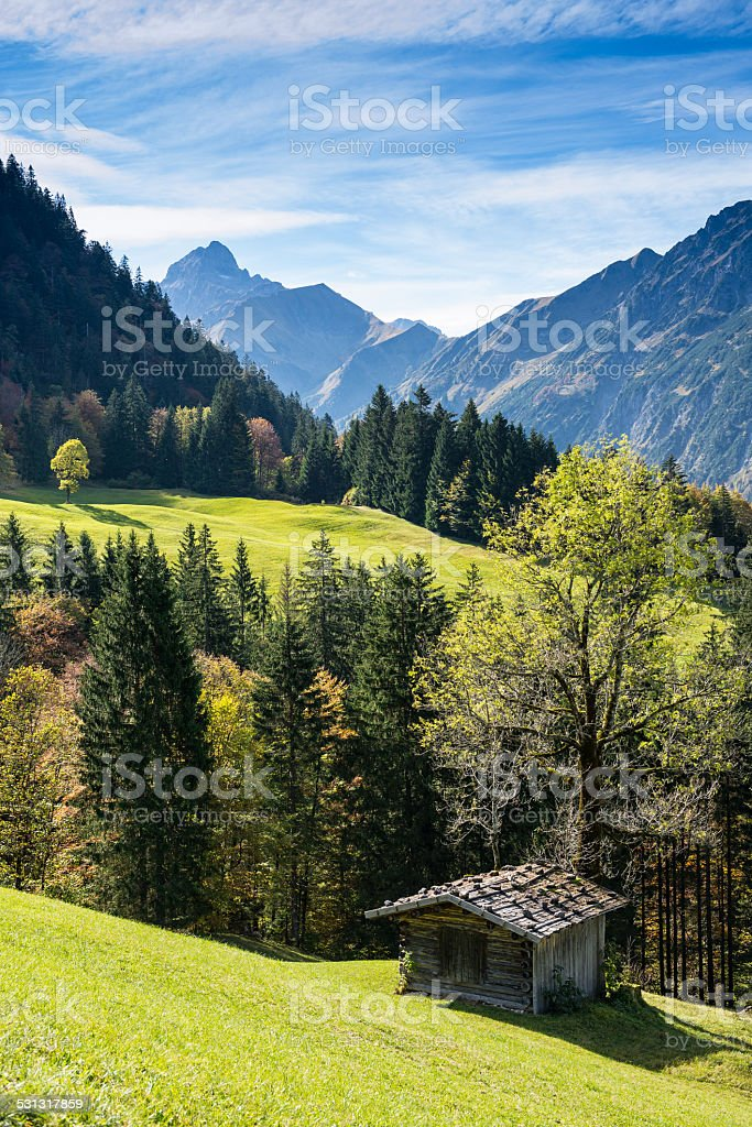 Wooden cabin on a green meadow stock photo