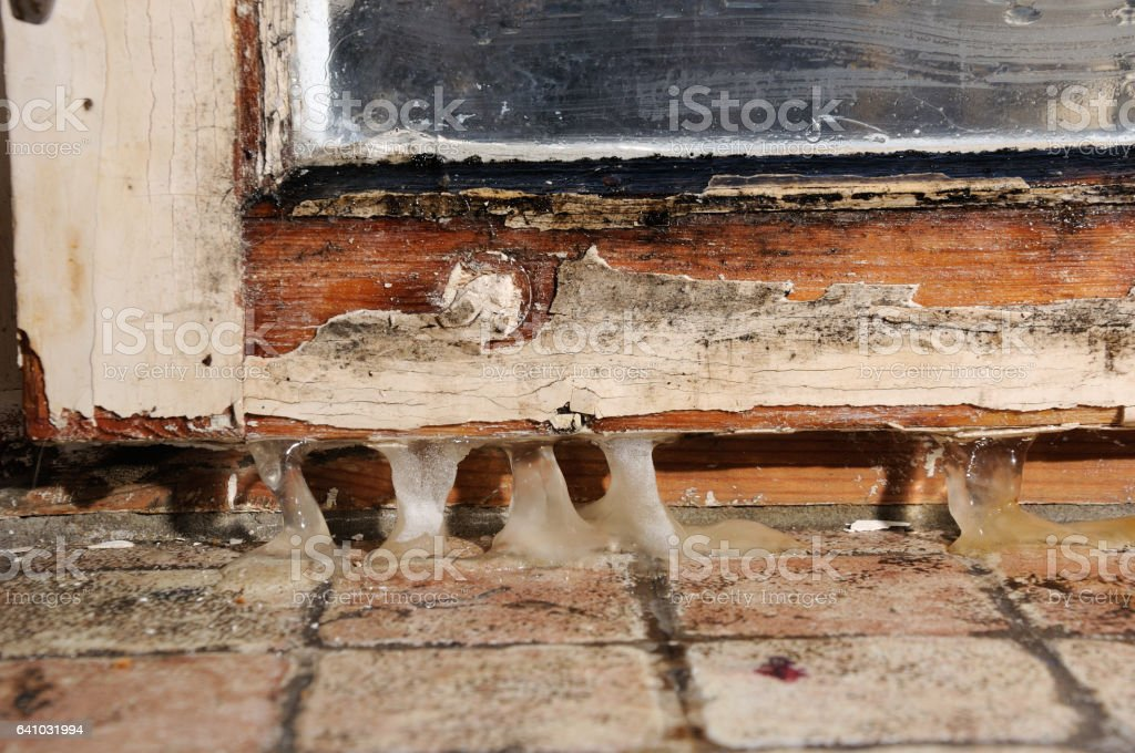 wooden casement mold stock photo
