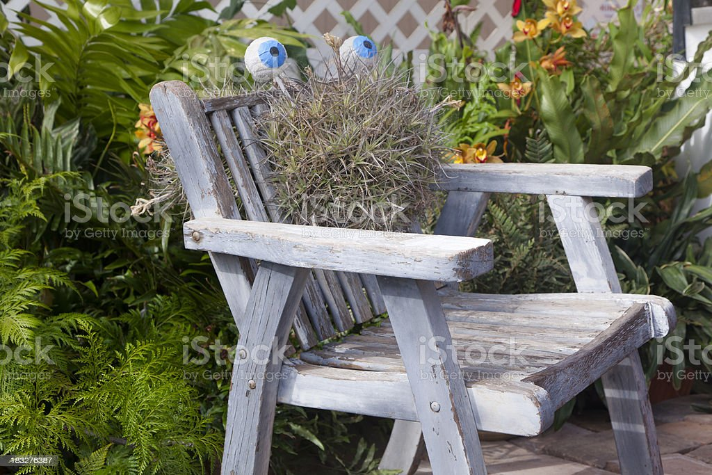 Wooden Chair on Outdoor Patio, Tropical Plants stock photo
