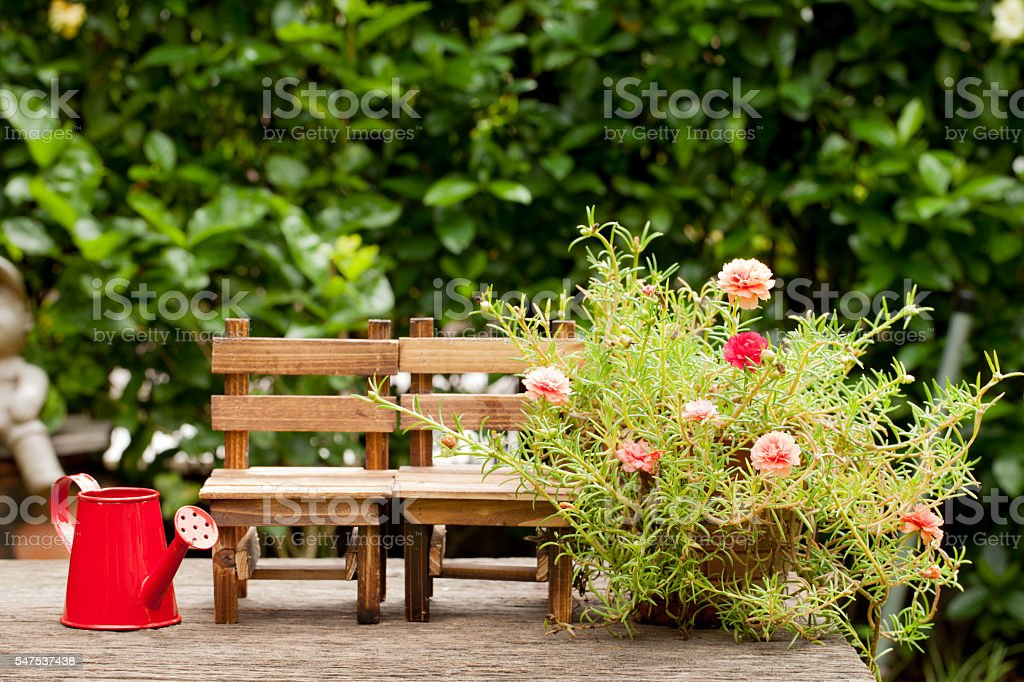 Wooden chairs and red watering can. Small flower garden, Concept stock photo