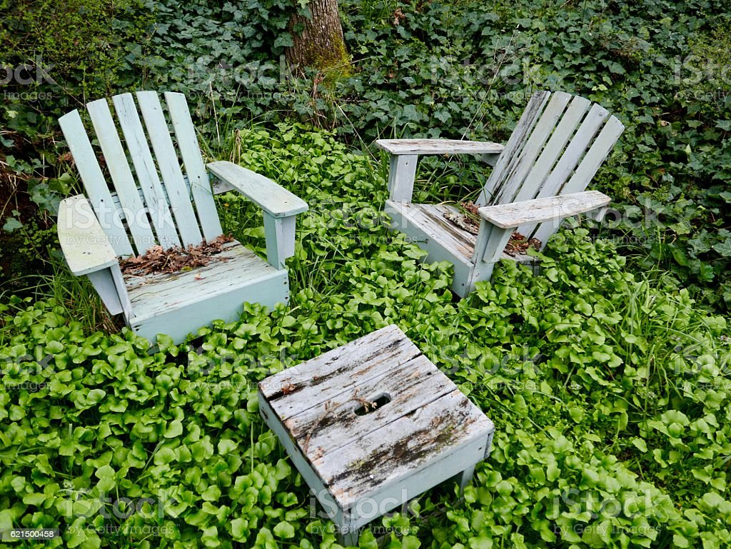 Wooden chairs surrounded by weeds and ivy stock photo