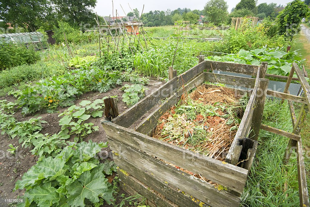 Wooden compost bin filled halfway sitting in large garden stock photo