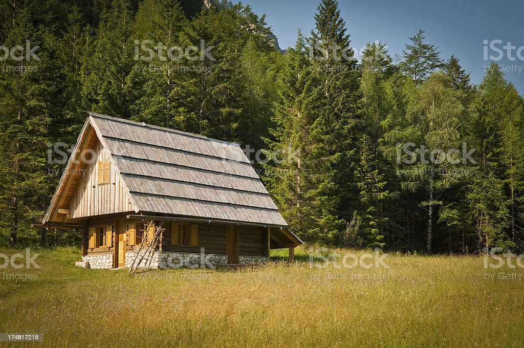 Wooden Cottage in Trenta Valley Slovenia Europe stock photo
