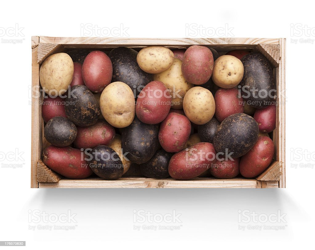 Wooden Crate of Mixed Potatoes on White royalty-free stock photo