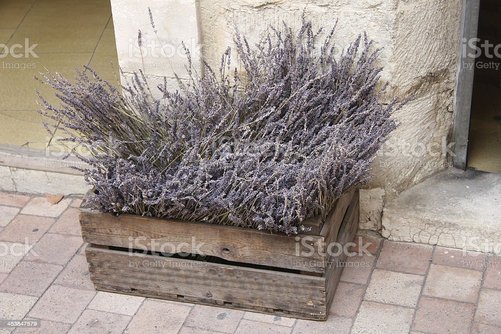 Wooden crate with lavender royalty-free stock photo