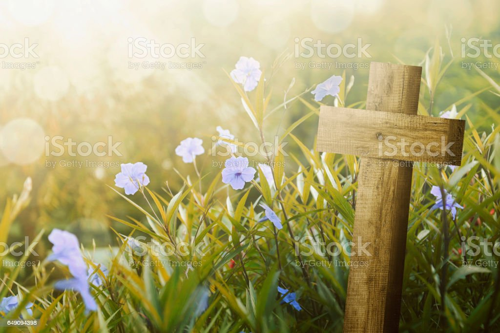 Wooden cross and purple flower with sunlight stock photo