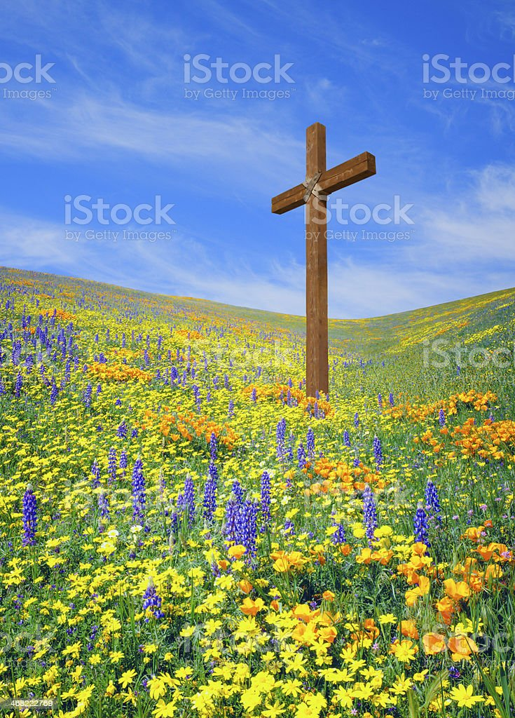 Wooden cross with spring wildflowers stock photo