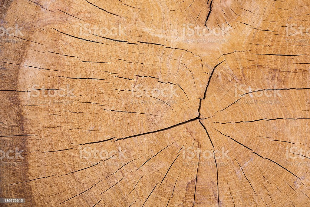 wooden cut royalty-free stock photo
