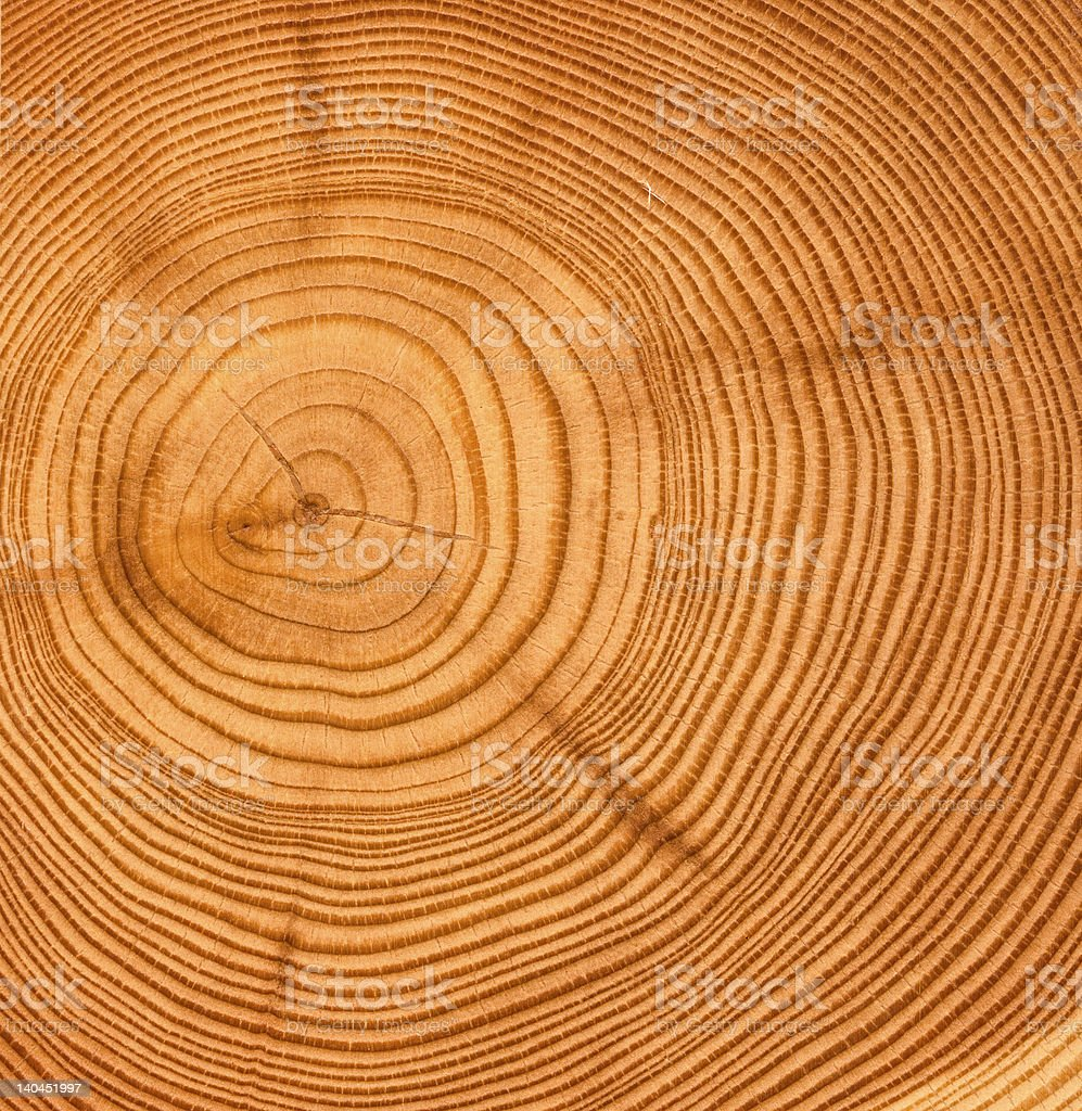 wooden cut texture royalty-free stock photo