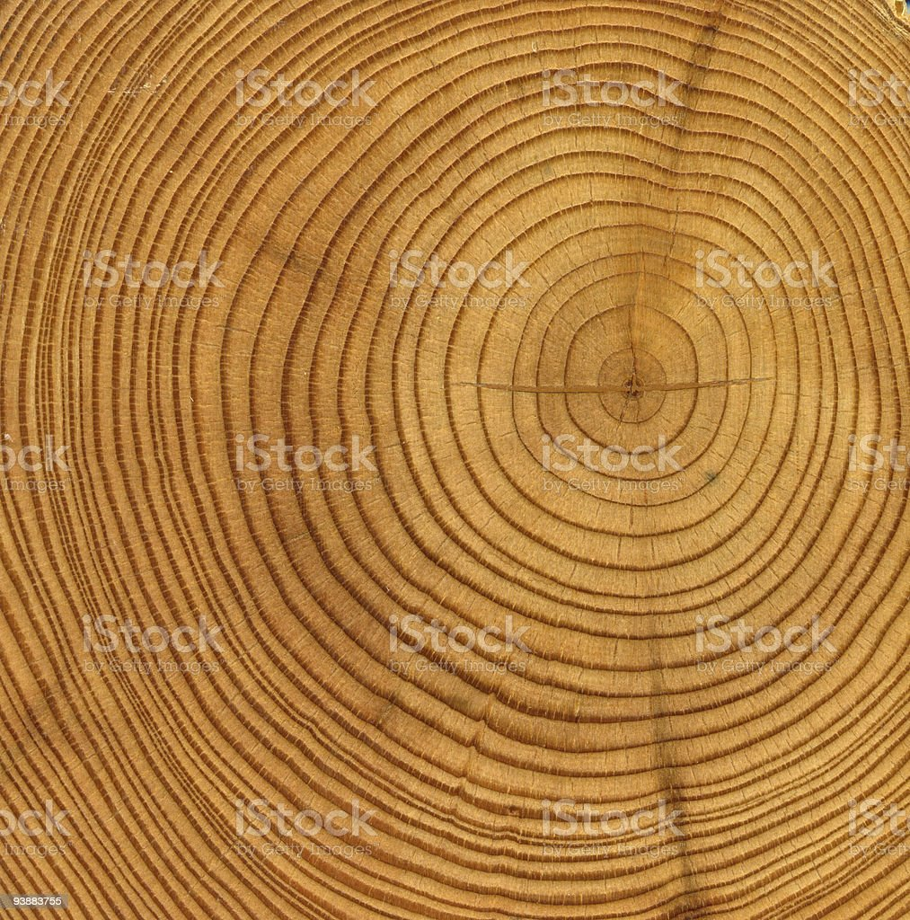 wooden cut texture stock photo