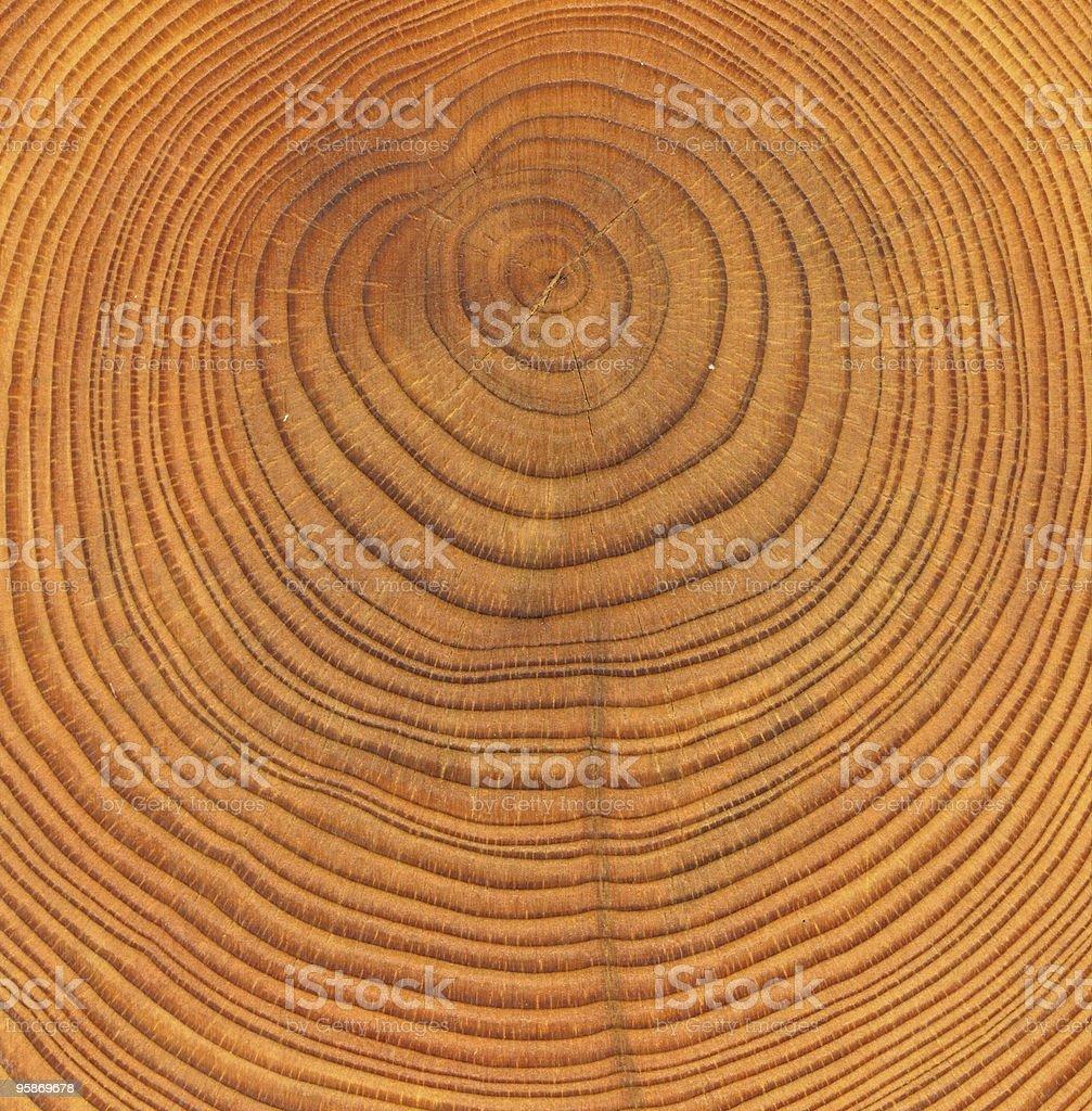 wooden cut texture stock photo