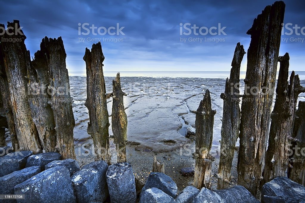 wooden dike and mud at low tide stock photo