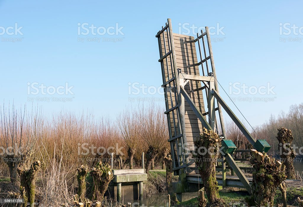 wooden drawbridge in nature with willows stock photo