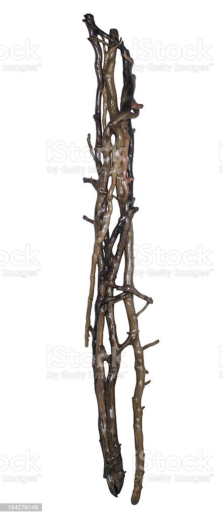 wooden entanglement royalty-free stock photo
