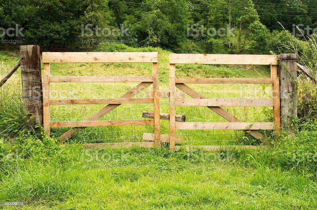 Wooden entrance door stock photo