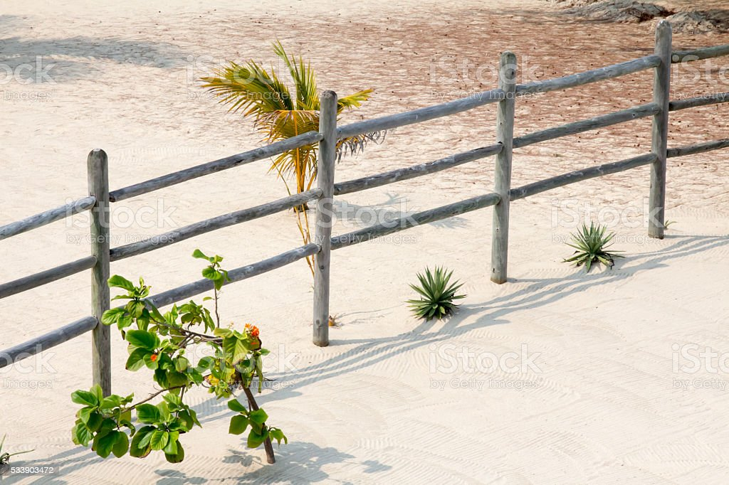 Wooden fence and tropical plants in the sand stock photo