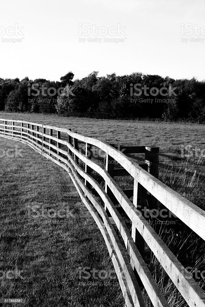 Coral Fence stock photo