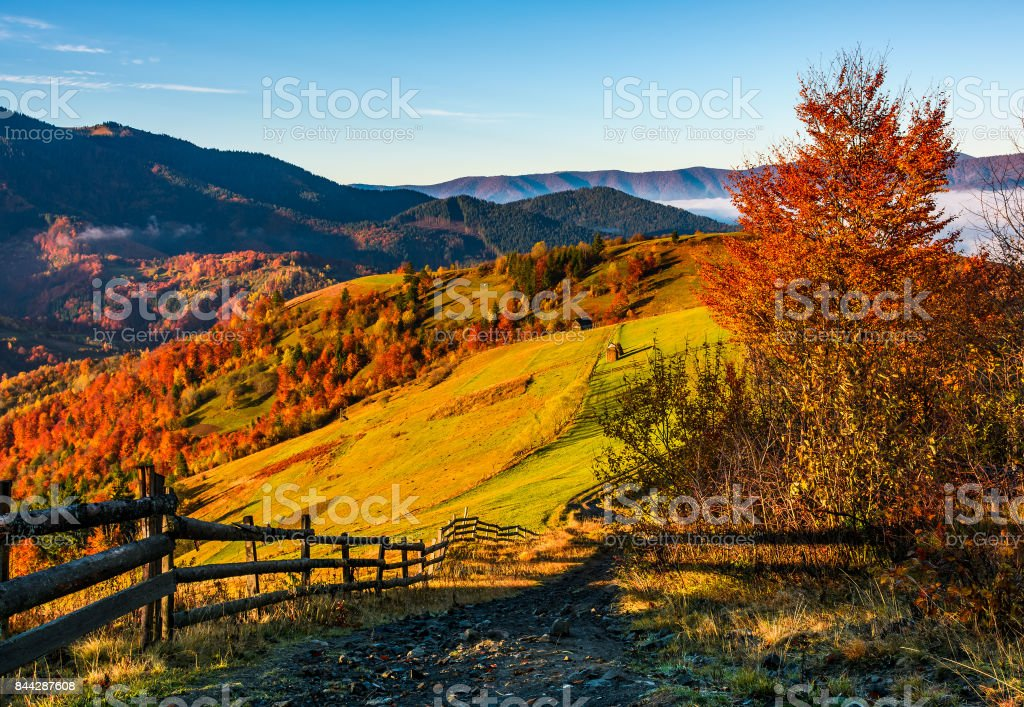 wooden fence through rural fields on hills in fog stock photo