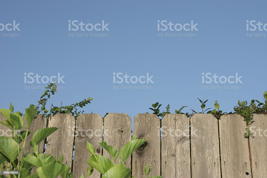 Wooden fence with green shrubs and blue sky royalty-free stock photo